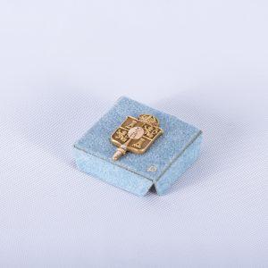 Sigma Delta Pi National Collegiate Hispanic Honor Society Pin wOriginal Box